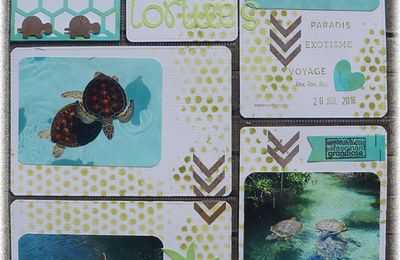 [ page Project life ] Tortues au parc