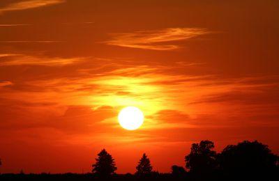 Pourquoi faudrait-il opter pour l'énergie solaire aujourd'hui ?
