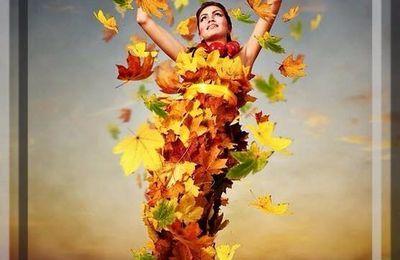 Un bel automne qui s'en va doucement