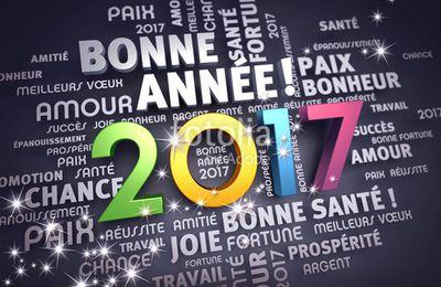Meilleurs voeux / Feliz año 2017