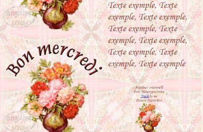 Bon mercredi Pivoines Incredimail & outlook & Papier A4 h l & enveloppe & 2 cartes A5 & signets    bon_mercredi_peonies05_dhedey_00