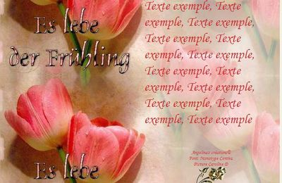 Es lebe der Frühling Tulipes Incredimail & A4 h l & outlook & enveloppe & 2 cartes A5 es_lebe_der_fruehling_tulipes