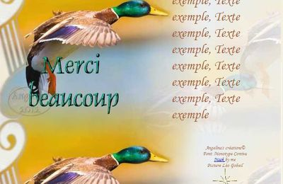 Merci beaucoup Colvert Incredimail & outlook & Papier A4 h l & enveloppe & 2 cartes A5 & signets merci_beaucoup_colvert_image01