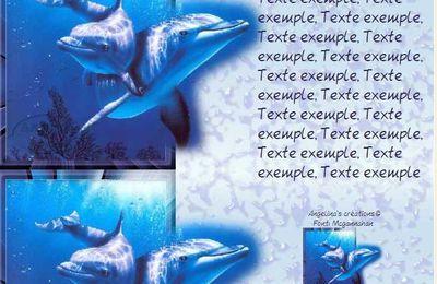 Dauphins sortant du cadre Incredimail & Papier A4 h l & outlook & enveloppe & 2 cartes A5 & signets 3 langues    dauphins_3_sortant_du_cadre