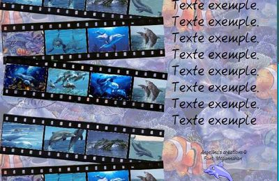 Dauphins 3way film strip Incredimail & outlook & Papier A4 h l & enveloppe & 2 cartes A5 & signets 3 langues dauphins_3way_film_strip