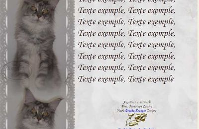 Maine Coon Incredimail & Papier A4 h l & outlook & enveloppe & 2 cartes A5 & signets 3 langues     chat_mainecoon_moune_cimg0790_00