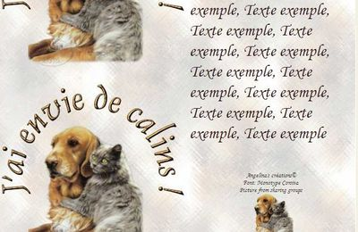 J'ai envie de calins ! Chien chat Incredimail & A4 h l & outlook & enveloppe & 2 cartes A5 & signets jai_envie_de_calins_walynbundy_gfxclaudia_00