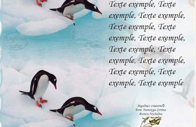 Pinguins Incredimail & Papier A4 h l & outlook & enveloppe & 2 cartes A5 & signets 3 langues    anm_micheline_animaux_07
