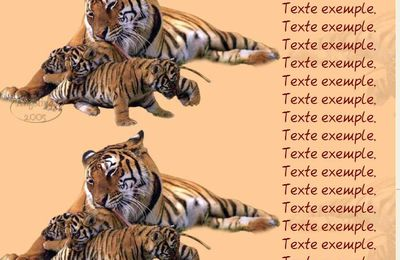 Tigres royal bengal Incredimail & Papier A4 h l & outlook & enveloppe & 2 cartes A5 & signets 3 langues    rina_dieren12