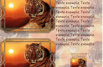 Tigre Animaux Sauvages Incredimail & Papier A4 h l & outlook & enveloppe & 2 cartes A5 & signets 3 langues     an_autres097