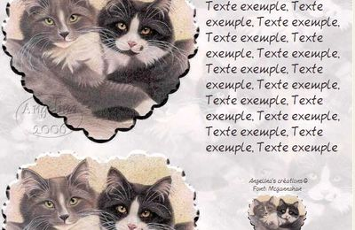 Chats masque coeur Incredimail & Papier A4 h l & outlook &  enveloppe & 2 cartes A5 & signets 3 langues   2_cat_friends_a