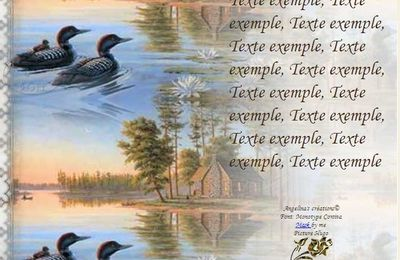 Canards paysage Incredimail & Papier A4 h l & outlook & enveloppe & 2 cartes A5 & signets 3 langues     canards_paysage_b3c6207a_hugo