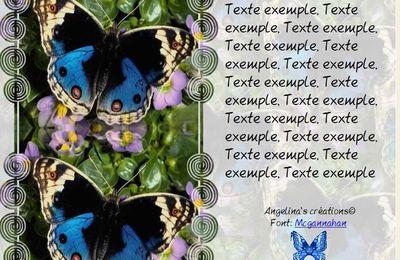 Papillon Incredimail & Papier A4 h l & outlook & enveloppe & 2 cartes A5 & signets 3 langues     pap_att4dfadsads