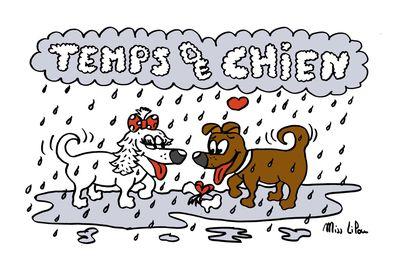 Temps de chien ( spécial Festival de Bozouls)