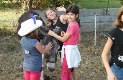 Film sur la fête de l'âne 2016