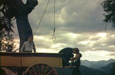 The hanging tree (Delmer Daves, 1959)