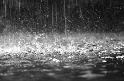 Symbole de la pluie dans la bible