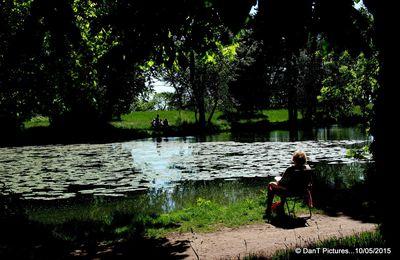 Joinville-le-Pont : Conseil municipal, conférence, réunion de quartier ....