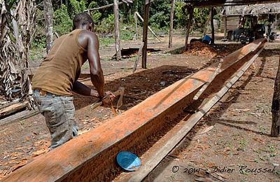 Construction pirogue