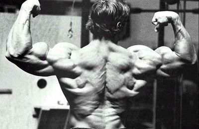 Building Lats with Arnold