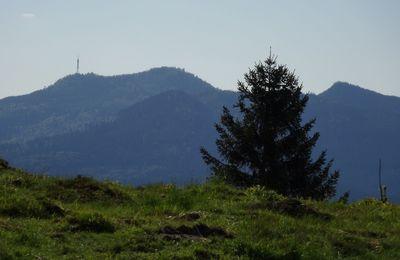 Le Donon - 1009 m
