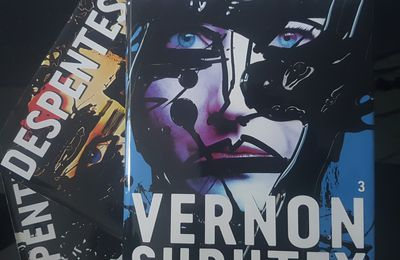 Vernon Subutex 3 de Virginie Despentes