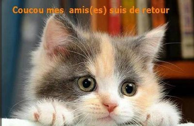 COUCOU ME REVOILOU !