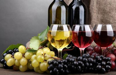 Guide to Choosing the Best Cheap Wine