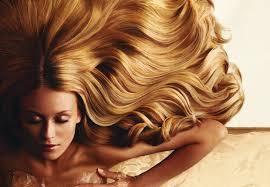 Les cheveux Gras