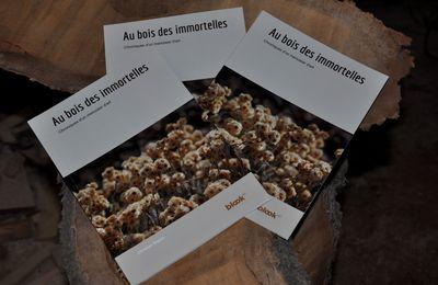 """Le 1er livre """"au bois des immortelles"""""""
