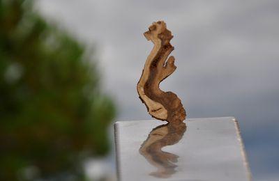 Spécial sciage de bois pour la 2ème Clairanenca aux moulins