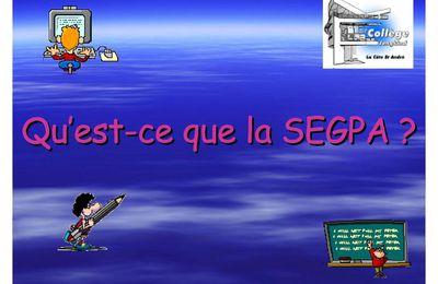 Qu'est-ce que la SEGPA?