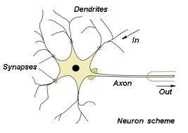 Neural network and soft computing