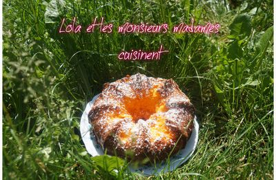 Gâteau à l'orange ( jus et pulpes d'orange )