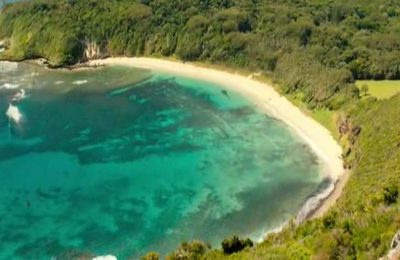 Une plage sans danger en apparence (THE SHALLOWS)