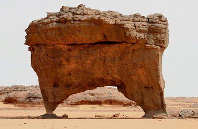 Beauté du désert : Sahara