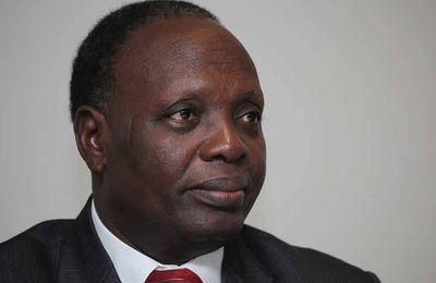 Animation de la vie politique : Le MEsB du Professeur Abiola bientôt en congrès
