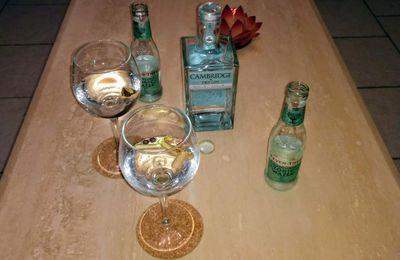 Apéritif dînatoire au Gin Tonic