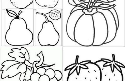 Dessins, modèles, gabarits fruits