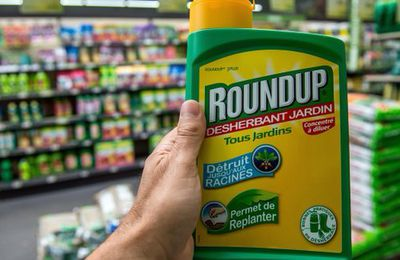 COLLUSION - L'Europe doit décider si elle interdit le glyphosate, sur la base d'un rapport... copié-collé sur Monsanto !