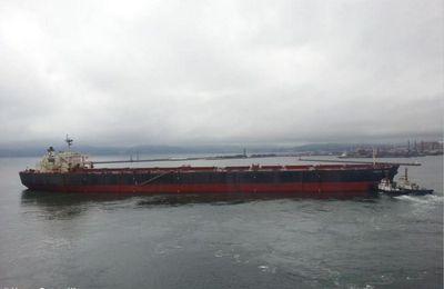 Un cargo minéralier géant sud-coréen sombre au large de l'Uruguay