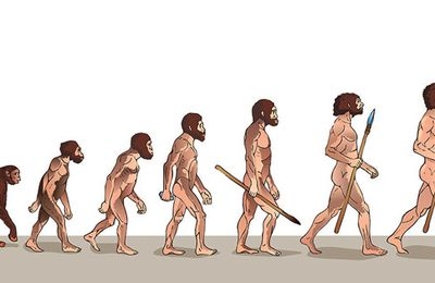 Société – De l'évolution des espèces