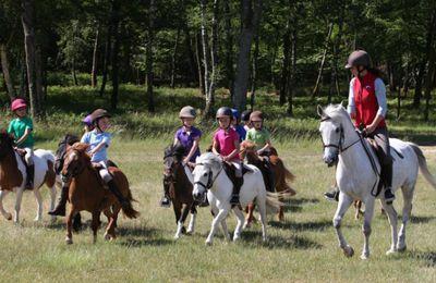 Equitation : 5 conseils pour s'y mettre