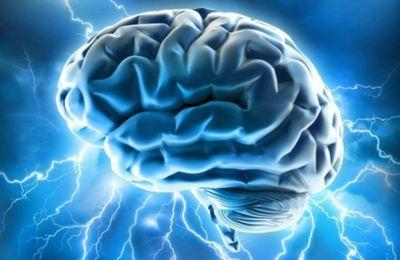Des chercheur réussissent à faire remonter des souvenirs oubliés