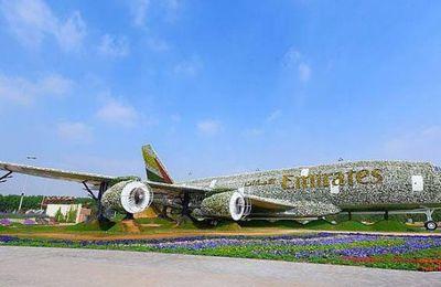 Dubaï décroche le record du monde du site le plus fleuri