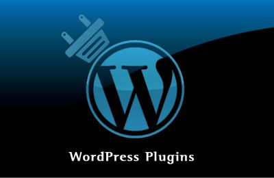 Importance of custom Plugins in WordPress web development