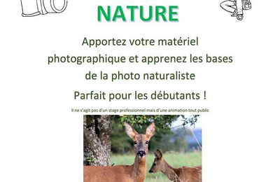 Initiation à la photo nature avec l'Eaudici