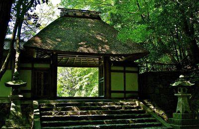 Kyôto : Le petit temple Hônèn-in 法然院 caché au fond des bois