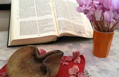 Les genres littéraires dans la Bible