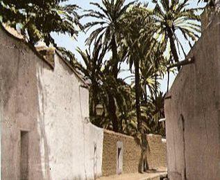 El Ghabou dans mes lointains souvenirs.